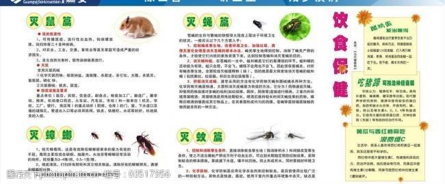 广西建工标志除四害宣传栏图片