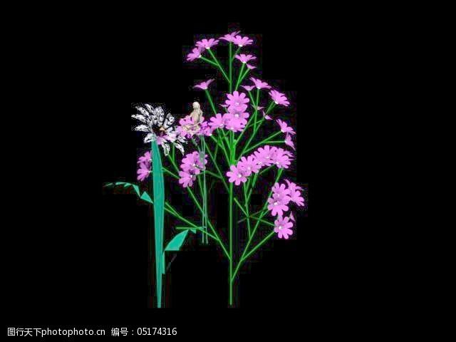 植物花草装饰素材室内装饰用品素材室内装饰素材28