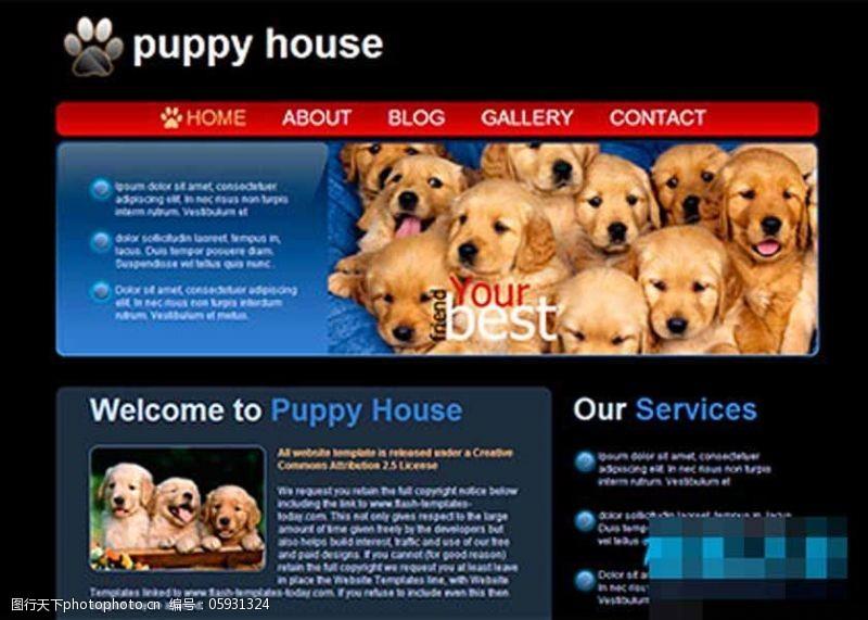 黑色背景小狗宠物之家网页模板