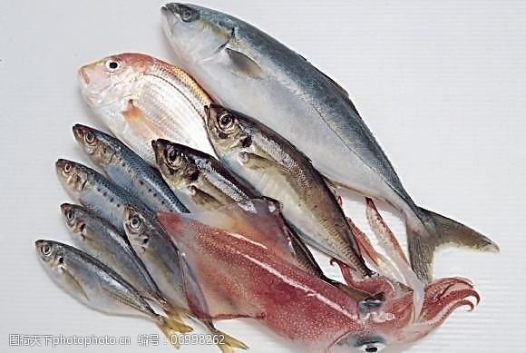 海鲜图片免费下载新鲜海鲜图片