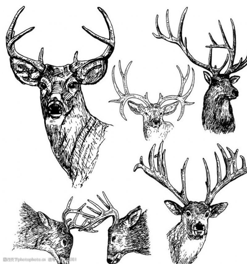 野外运动打猎狩猎图片