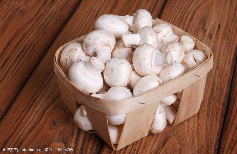 香蘑菇蘑菇